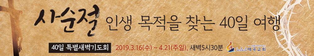 매곡교회-5000-x-900-막대-사본 (1).jpg